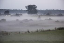 Landschaft31